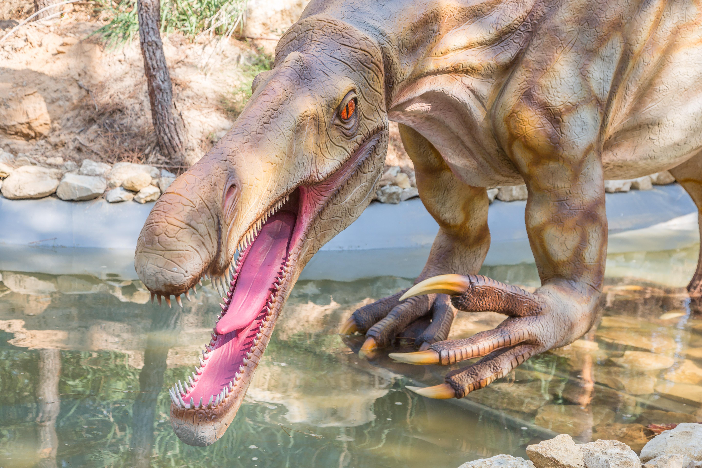 Dinossauros Lourinhã